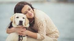dog hug 2