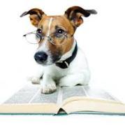 book smart
